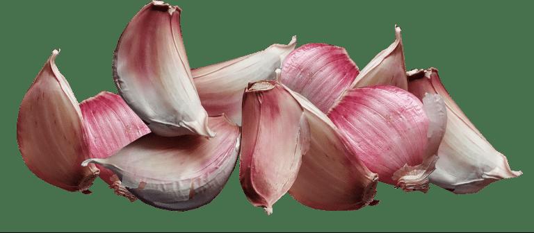 Garlic 3791503 1920